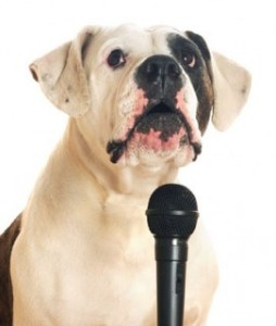 dog_microphone-271x320